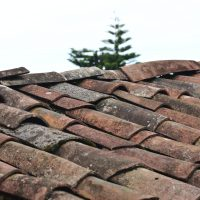 5 Tips for Your Hail and Roof Claim